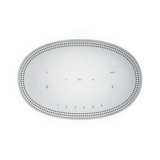Bose Home Speaker 500 Silver Top View